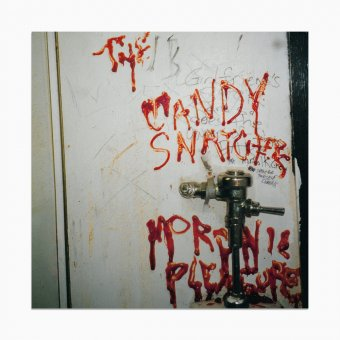 The Candy Snatchers - Moronic Pleasures